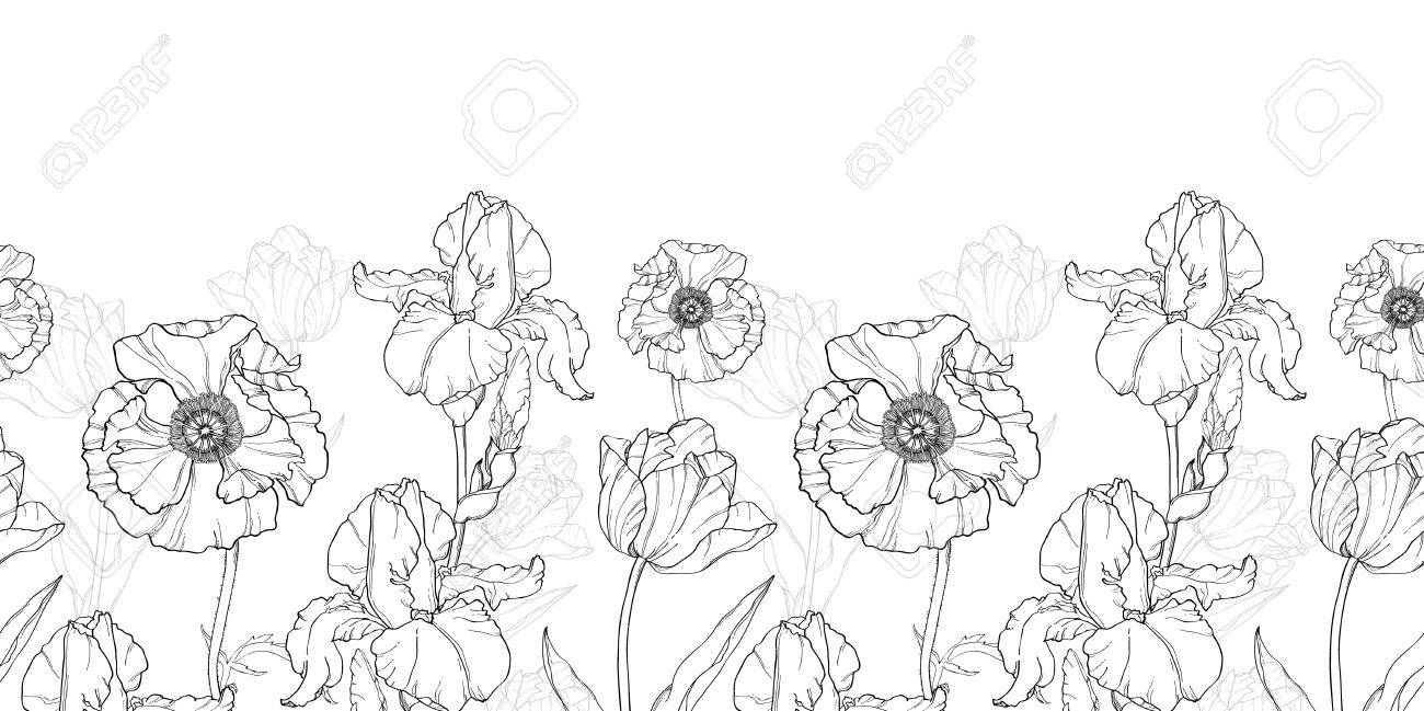 Vintage Black White Flowers Drawing Horizontal Border Seamless Repeat Pattern With Tulips Poppies Iris