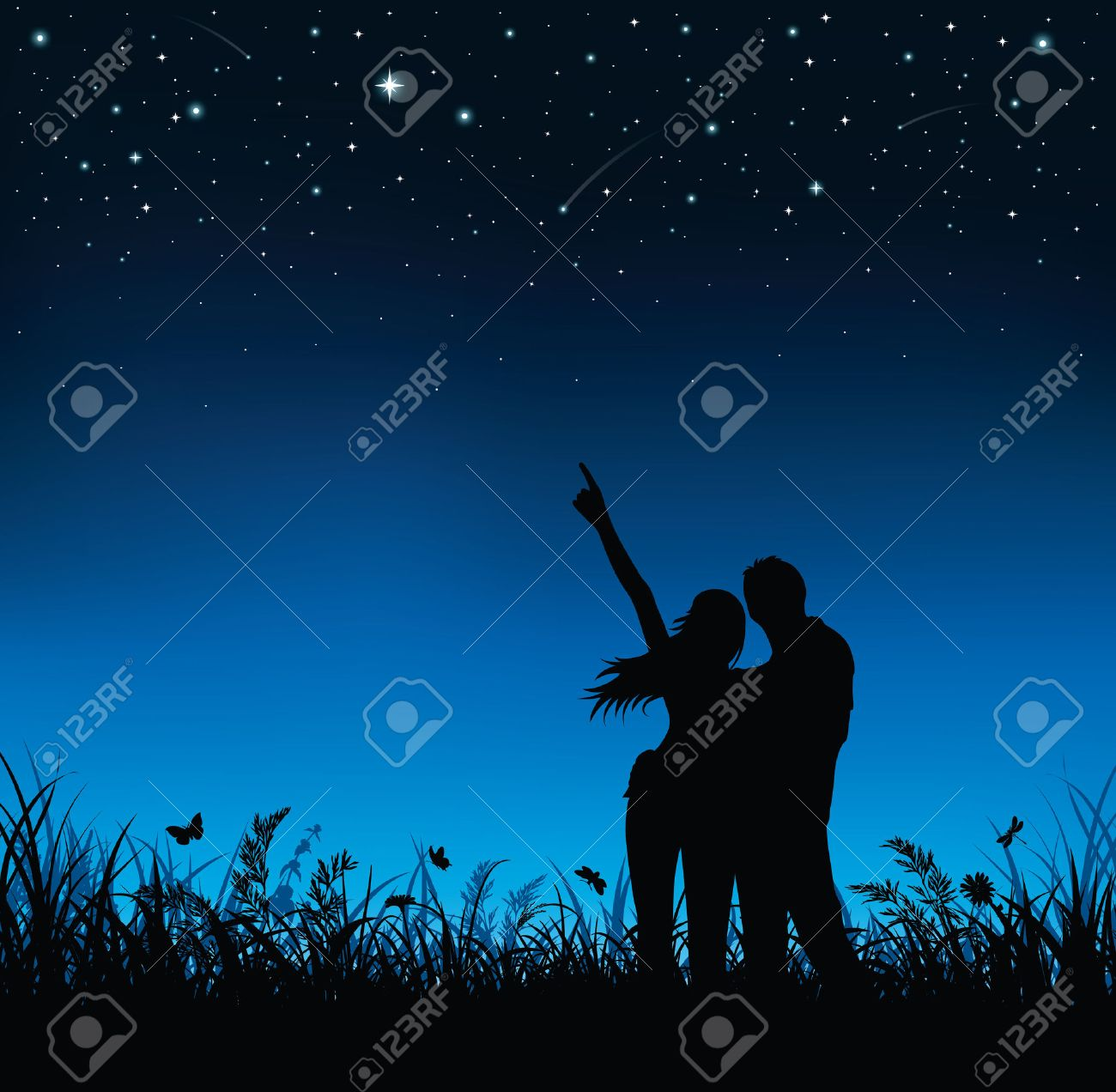 Silhouette of couple standing and watching the night sky. - 37059717
