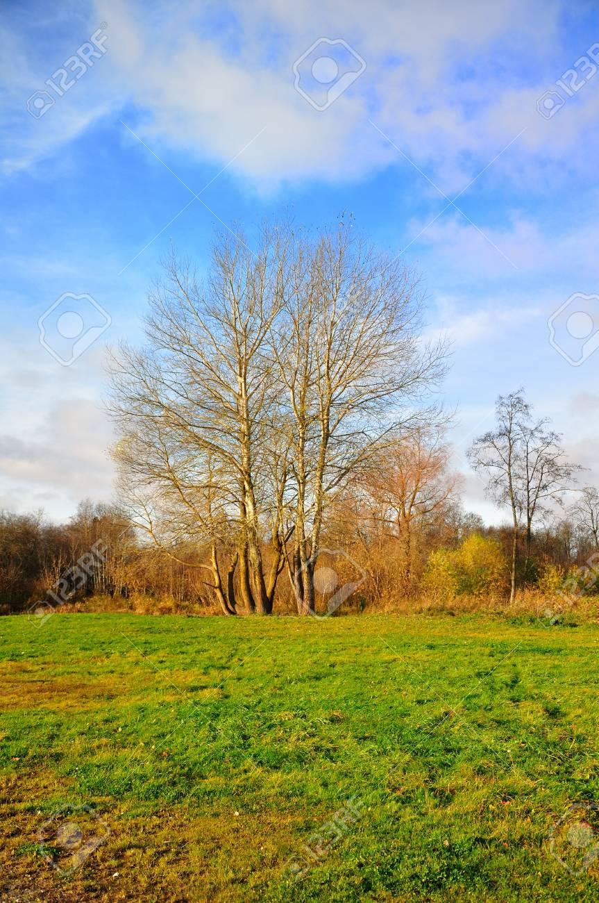 landscape view Stock Photo - 11099002