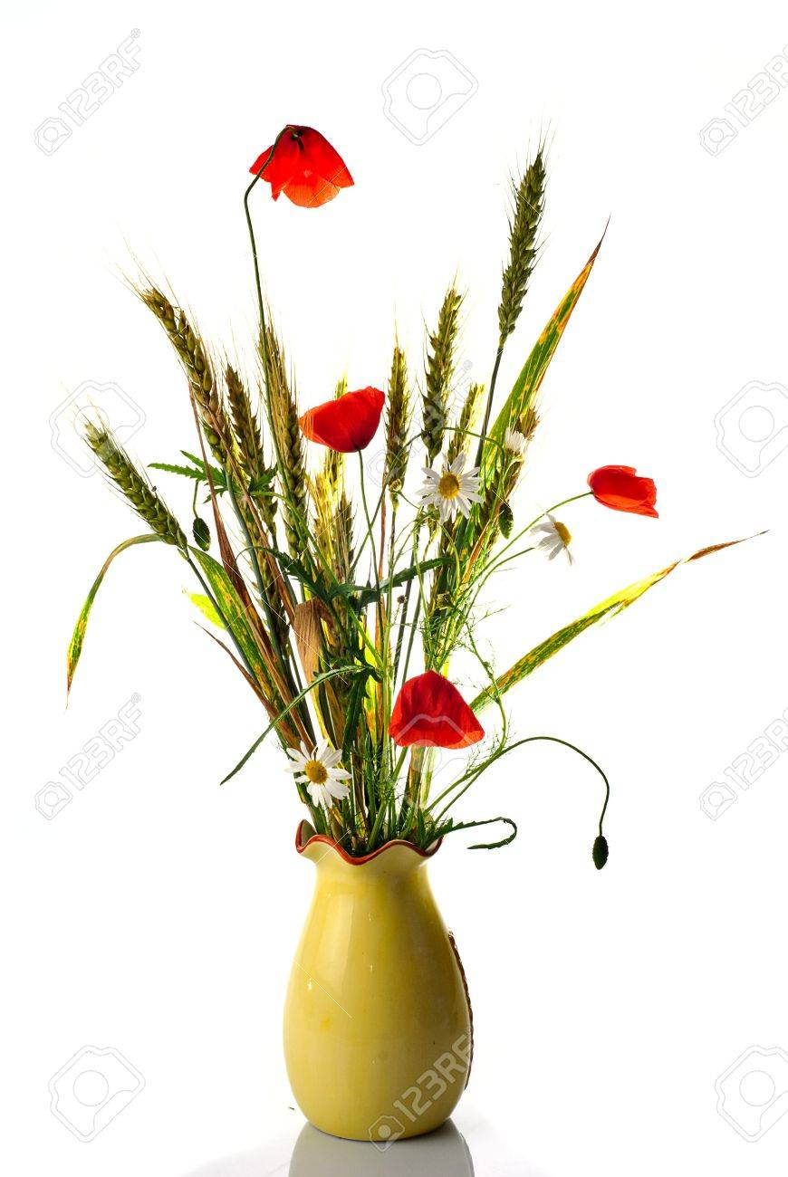 Wild flowers bouquet with wheat poppy and ox eye daisy isolaed stock photo wild flowers bouquet with wheat poppy and ox eye daisy isolaed on white shallow deep of field izmirmasajfo