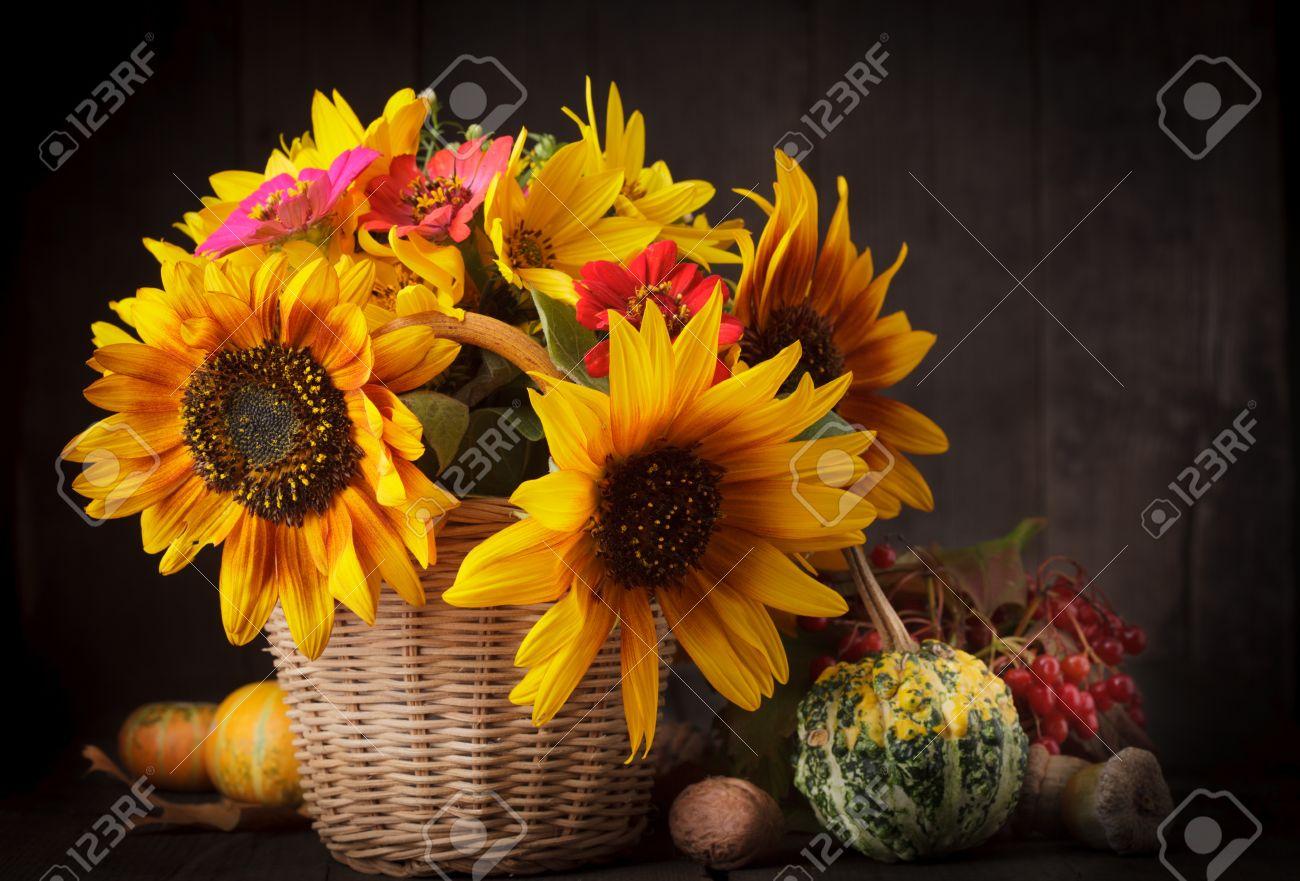 Still life with autumn harvest on wood background Stock Photo - 16396951