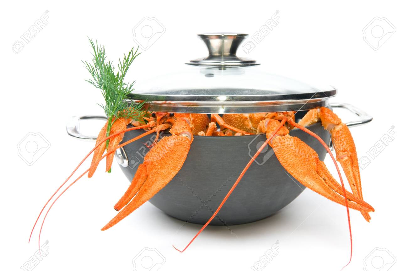 Closeup of isolated crayfish in pan on white background Stock Photo - 7986080