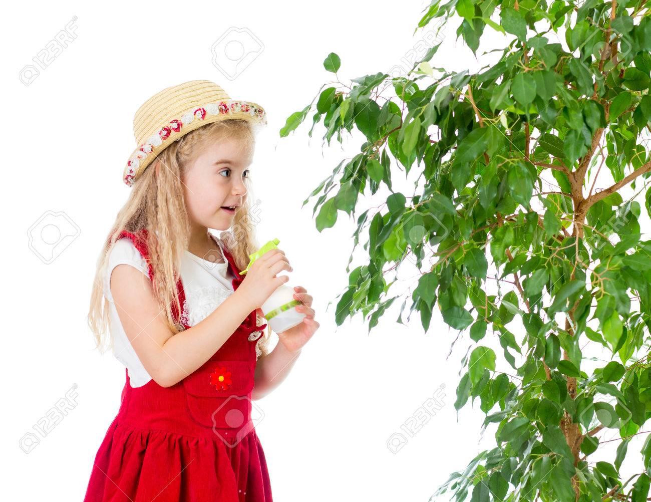 gardener kid wets or waters tree stock photo 23108370