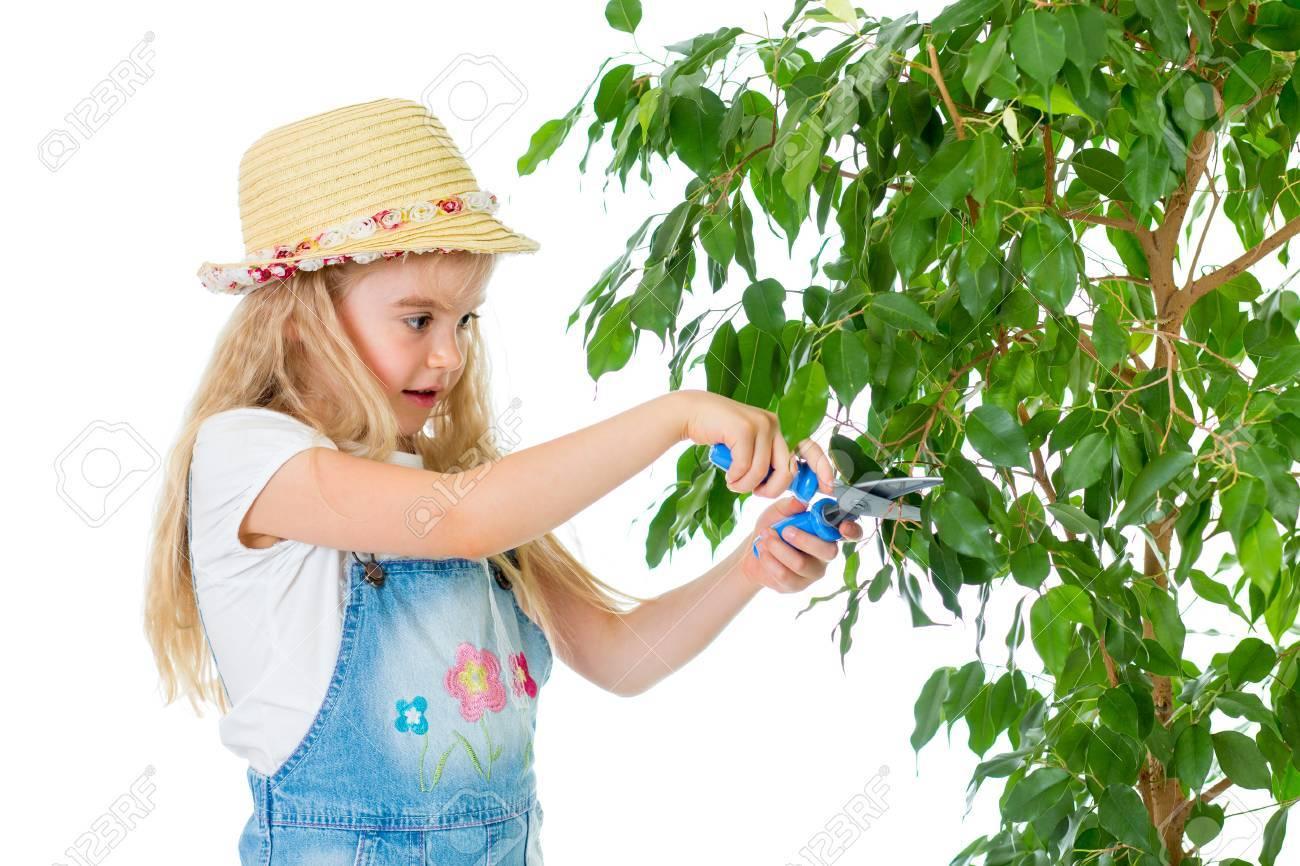 stock photo gardener kid caring at tree