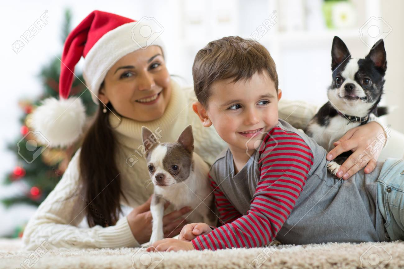 smiling family and dogs lying on carpet at home by Christmas..