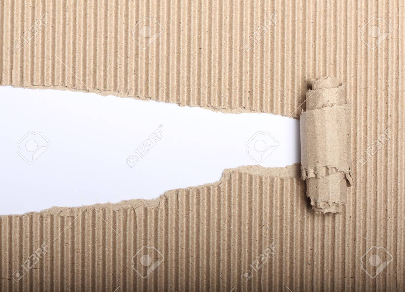 White paper with copy space and torn cardbox - 24565571