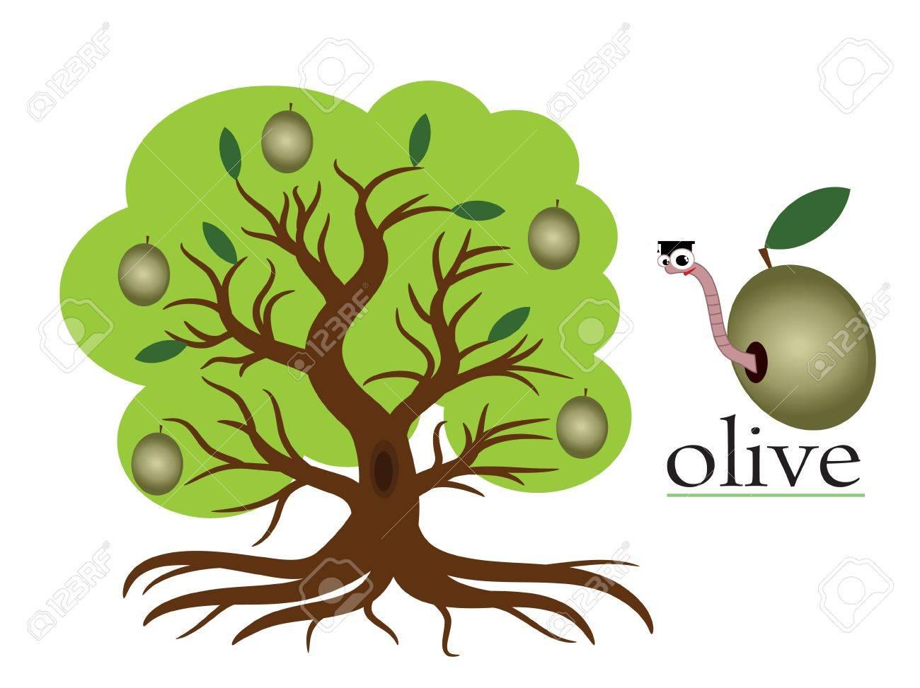 Olive tree Stock Vector - 9953022