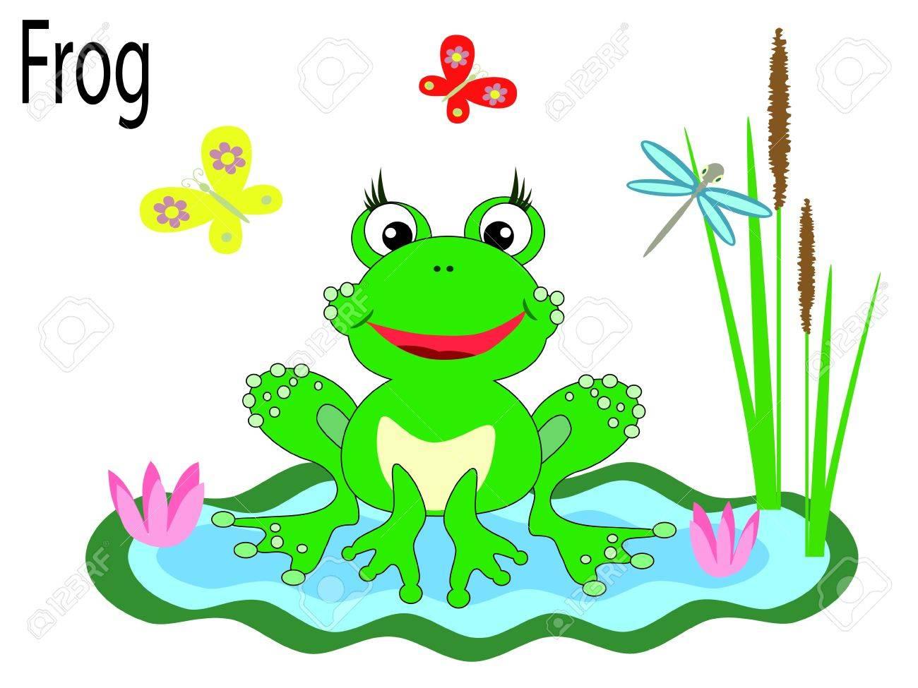 Vector animals,frog Stock Vector - 10203779