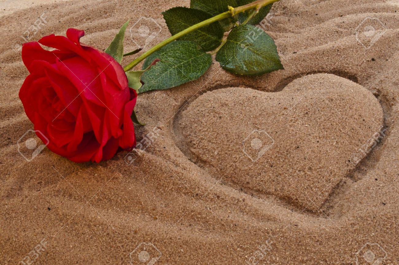 Rosa Roja En La Playa Con Un Corazón En La Arena Fotos Retratos