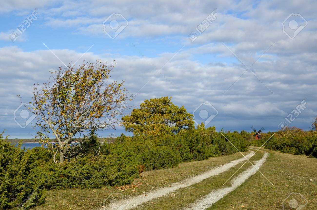 Coastal tracks in autumn Stock Photo - 15796492