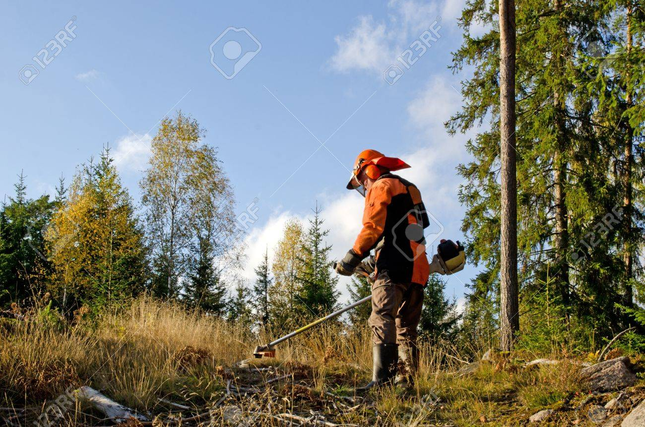 Worker with a brush cutter Stock Photo - 15985429