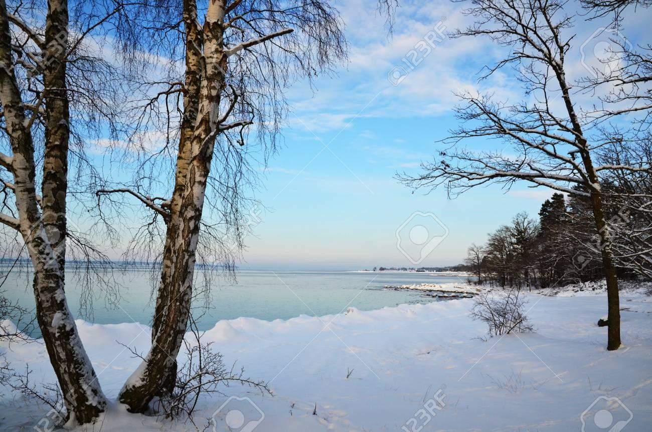 Winter coast view Stock Photo - 17443098