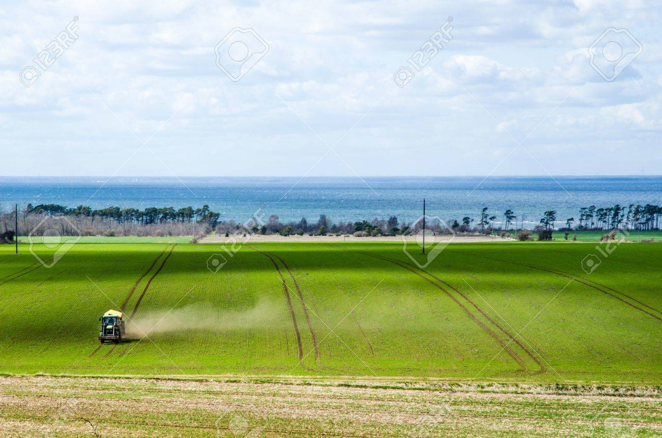 Farming by tractor in a green field at spring  From the swedish island Oland in the Baltic sea Stock Photo - 19451397