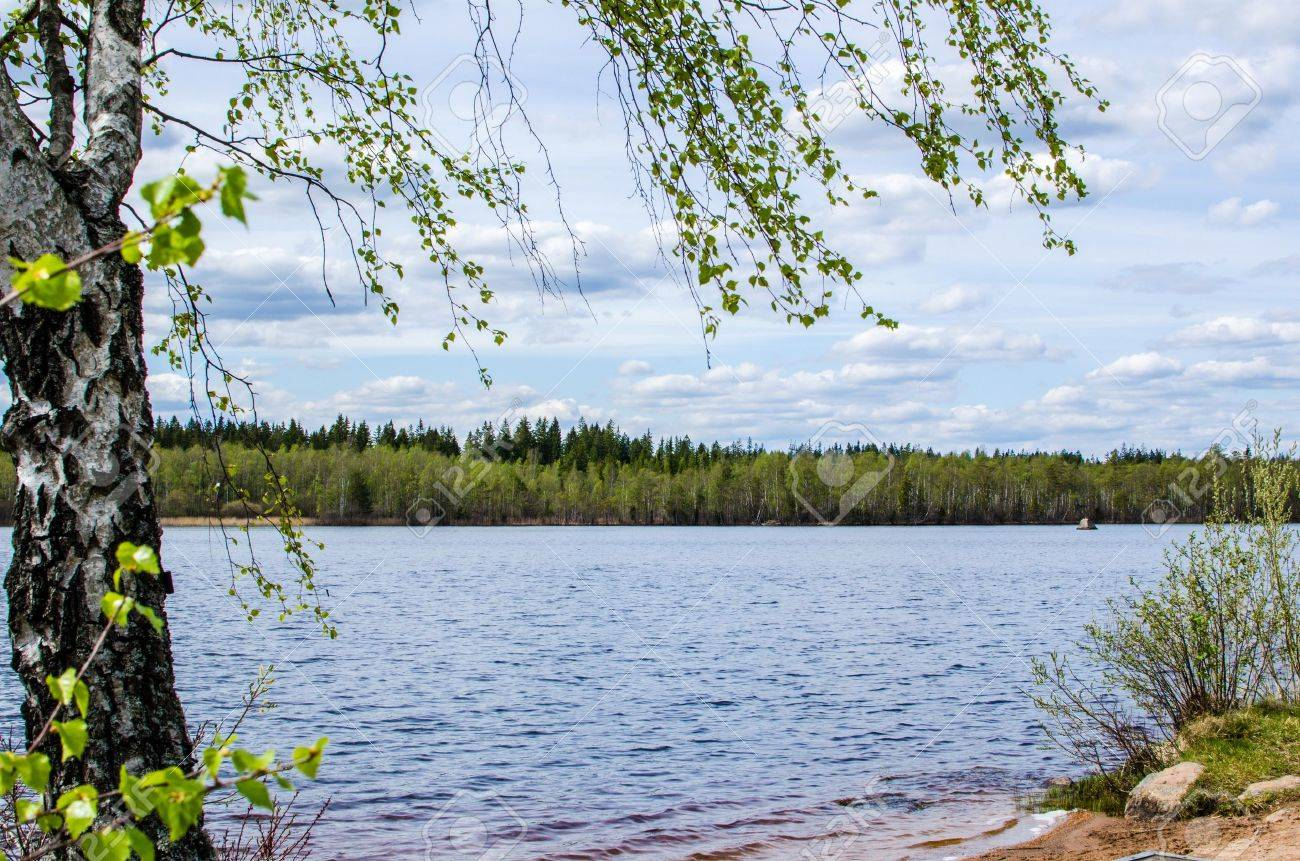 View over a lake at springtime in the province Smaland in Sweden Stock Photo - 19839243