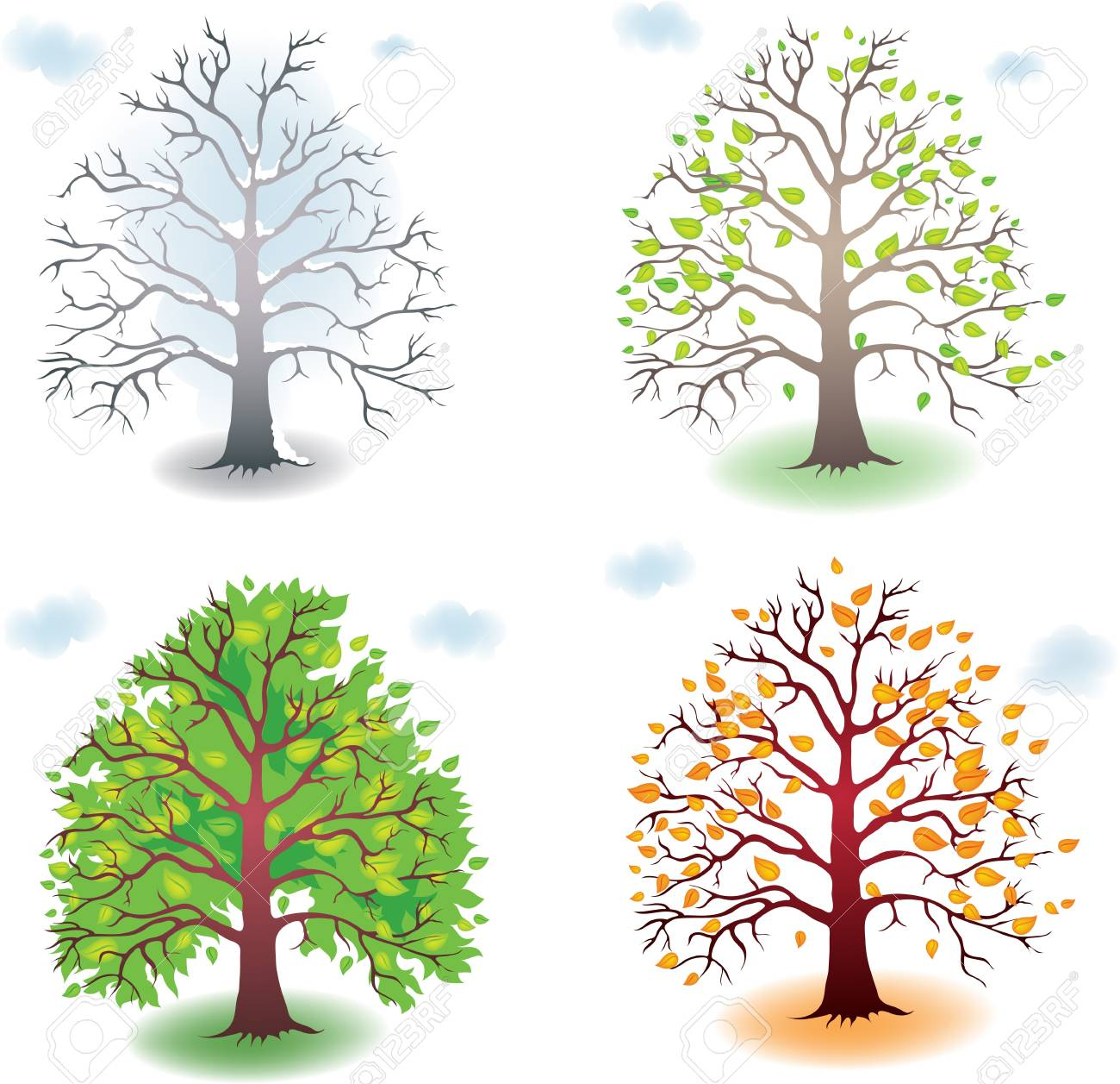 Four states of the tree during the seasons Stock Vector - 9931205