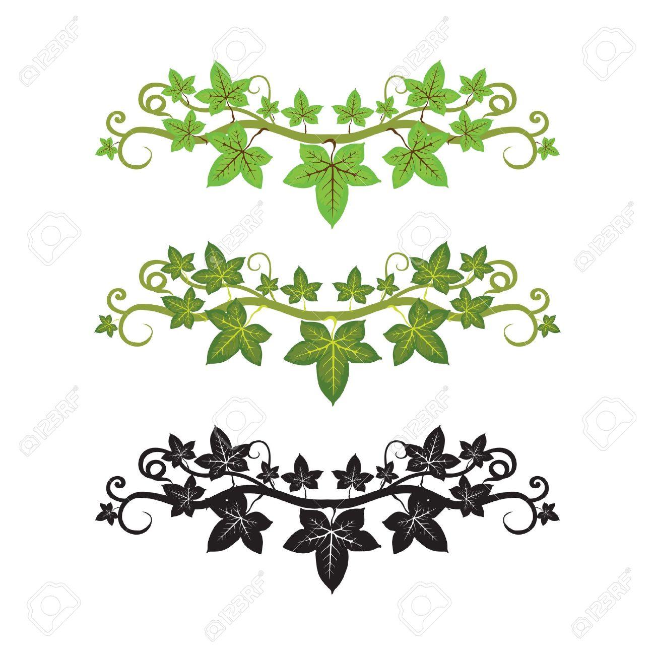 pattern illlusstration of ivy plant Stock Vector - 14225405