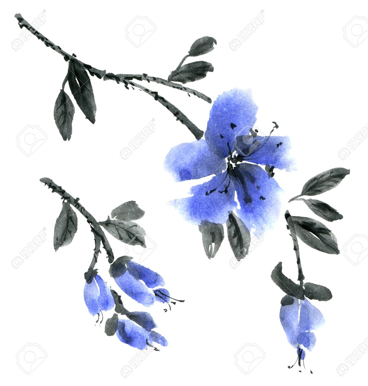 Watercolor And Ink Illustration Of Branch With Blue Flowers Sumi E
