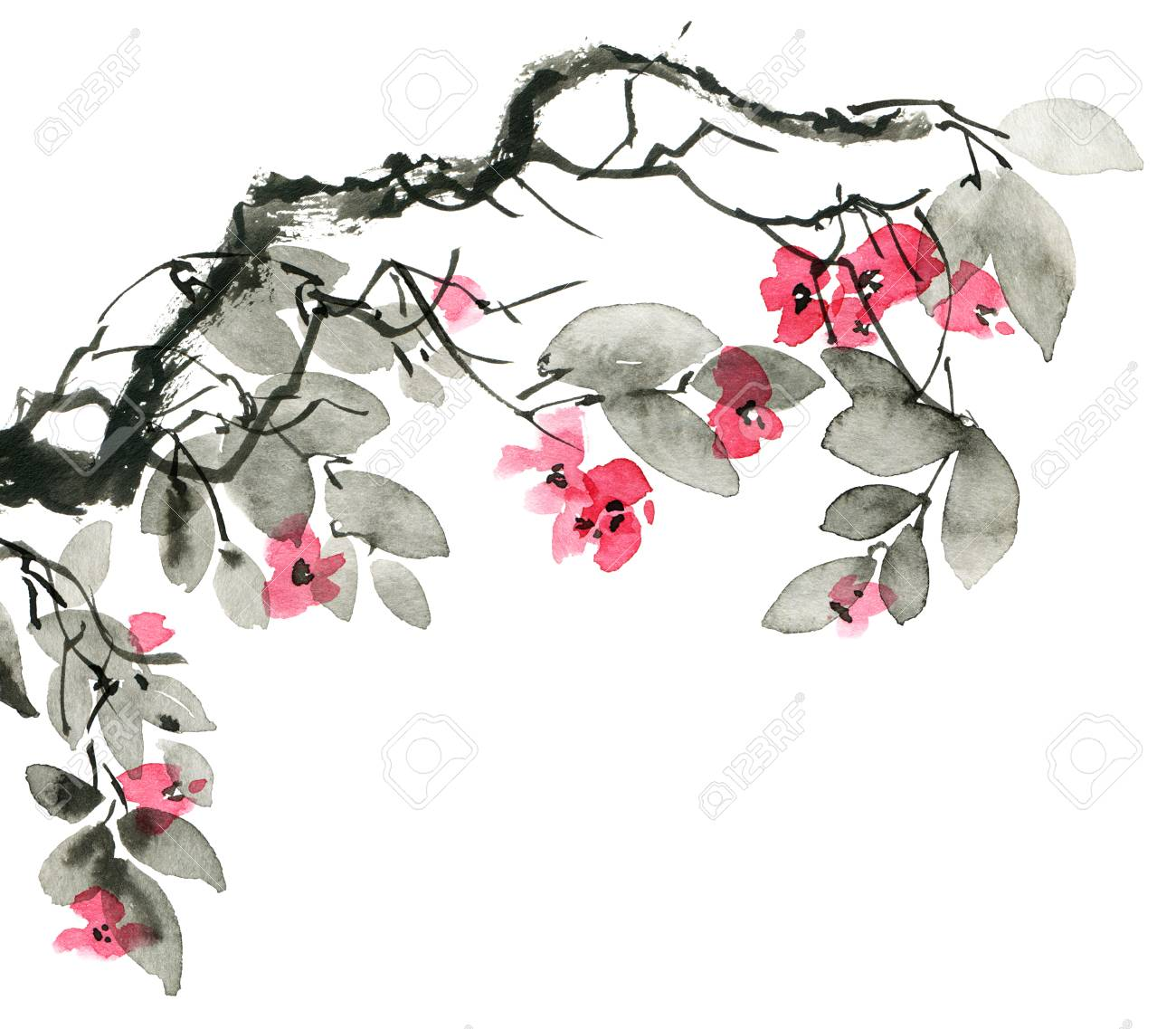 Watercolor And Ink Illustration Of Blossom Tree Branch With Flowers Stock Photo Picture And Royalty Free Image Image 120937897