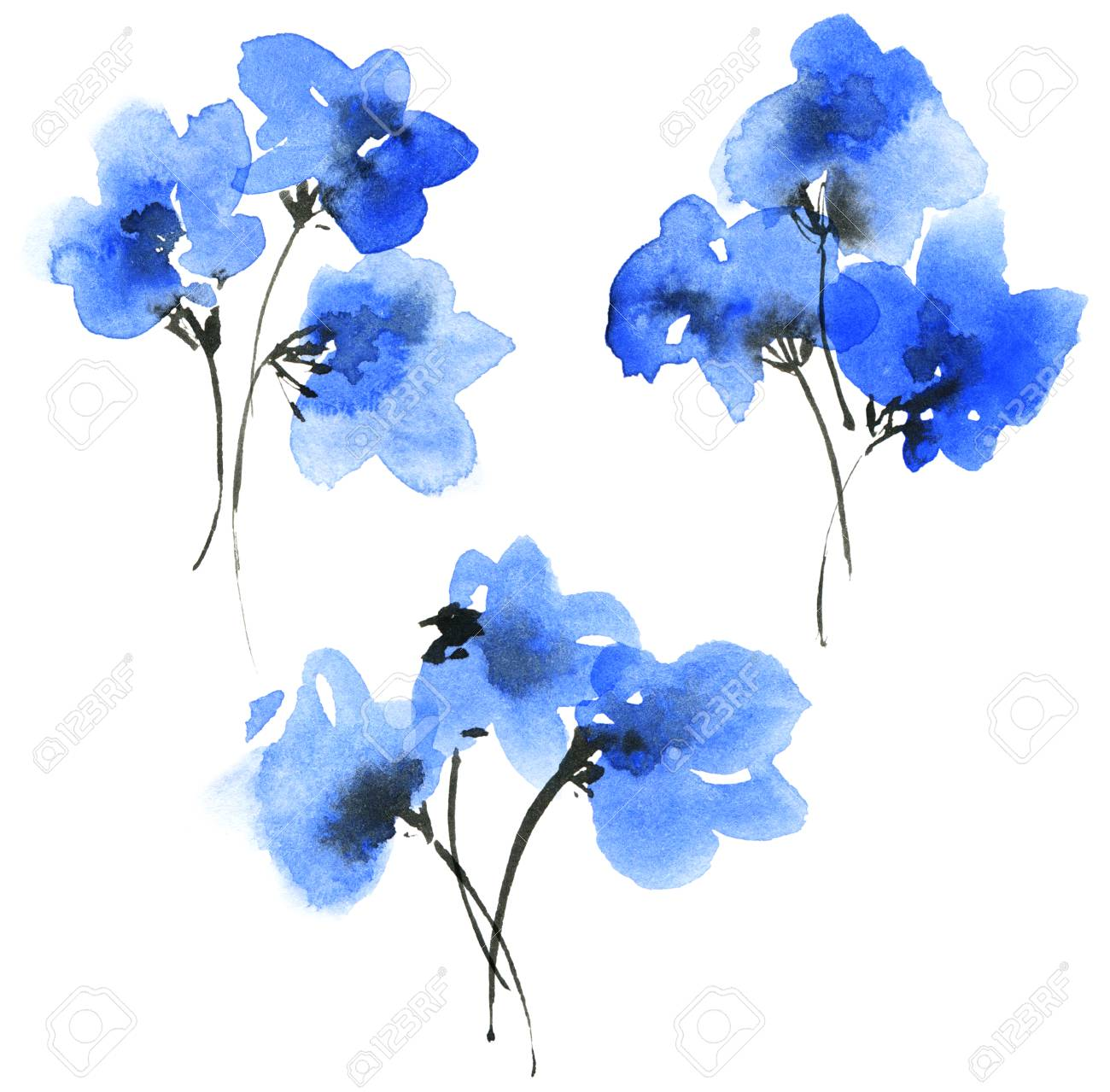 Watercolor And Ink Painted Blue Flowers Bouquets Oriental Traditional Stock Photo Picture And Royalty Free Image Image 123974951