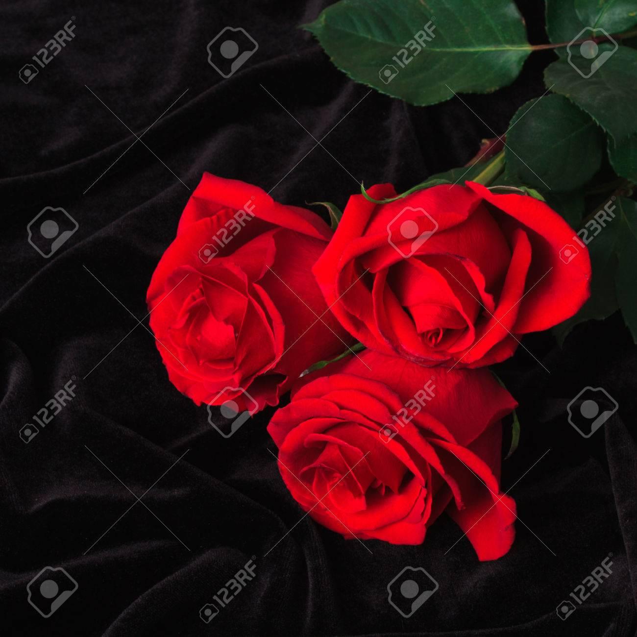 Beautiful red rose on black satin as background stock photo picture beautiful red rose on black satin as background stock photo 25909607 izmirmasajfo