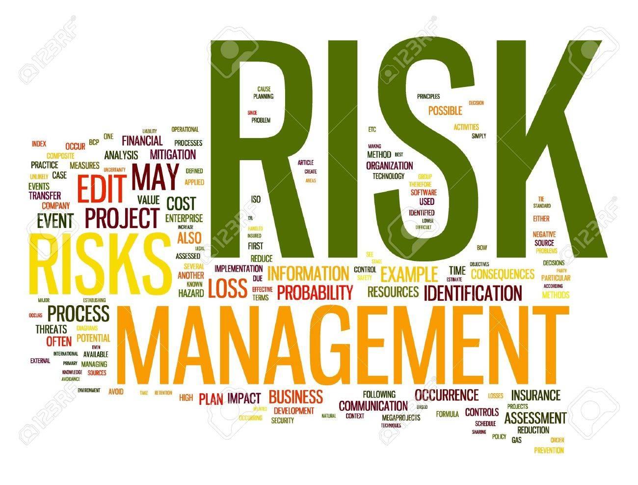 risk management: Risk management in word tag cloud