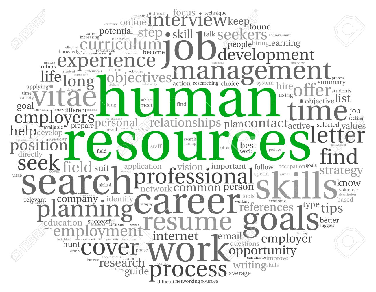 Human resources concept in tag cloud on white background Stock Photo - 18173611