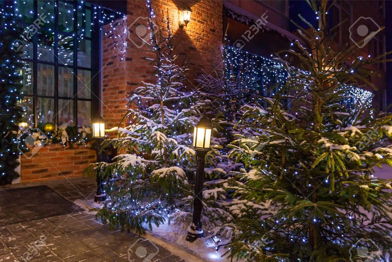 Décoration De Jardin De Noël. Cour De Noël Avec Des Arbres De Noël ...