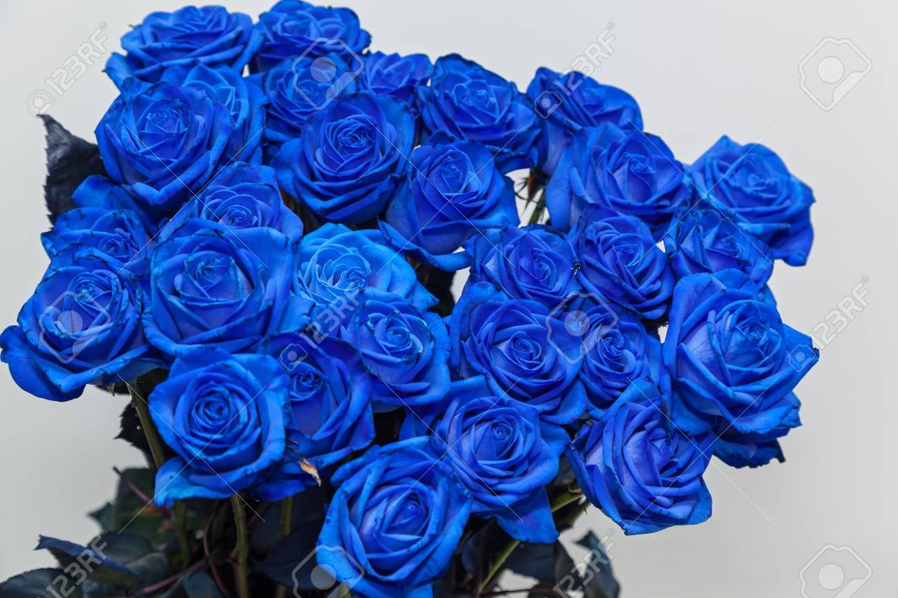 Ramo De Rosas Azules Rosas Hermosas Para El Regalo Del Día De San