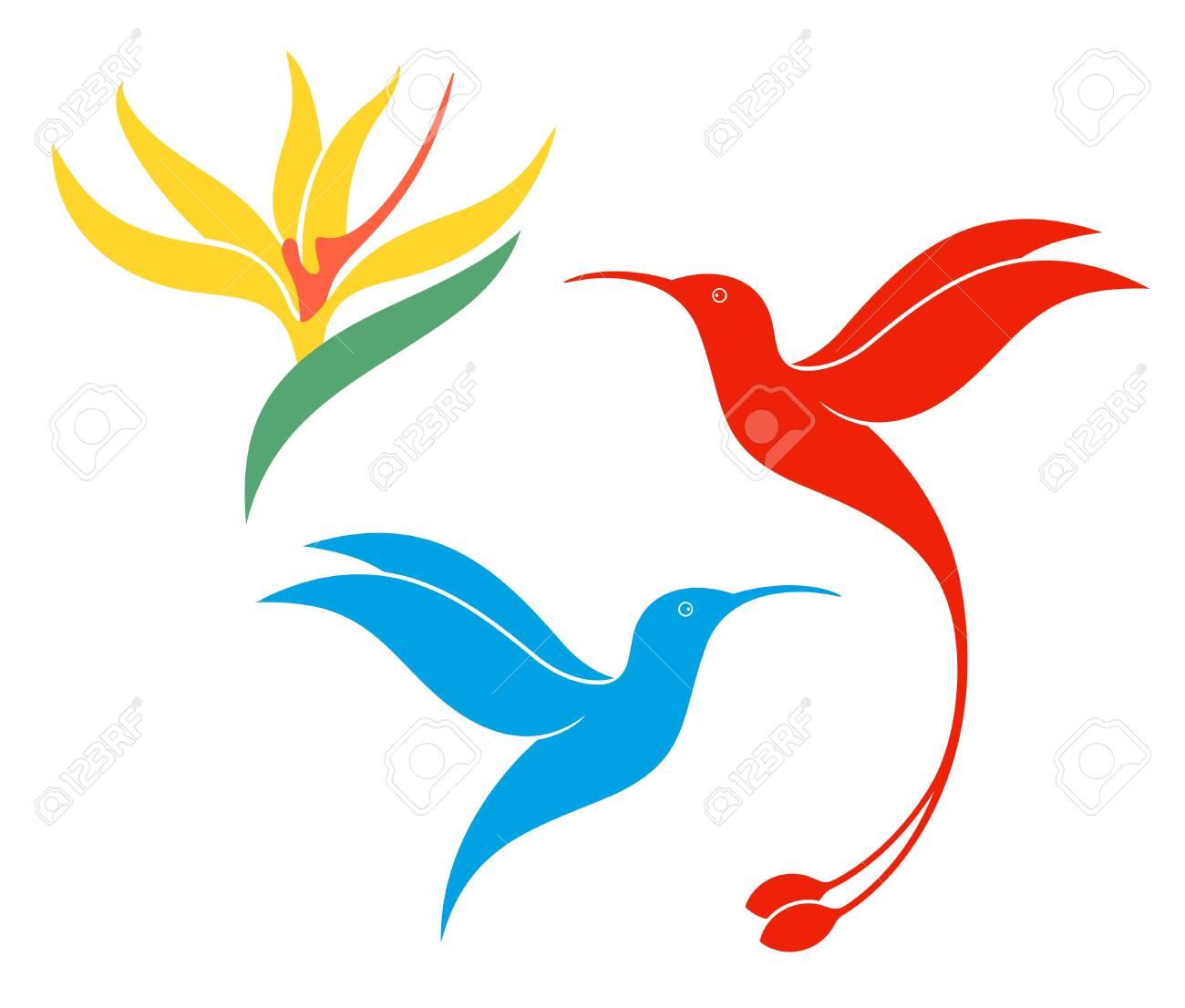 Hummingbird logo. Isolated hummingbird on white background - 134470660
