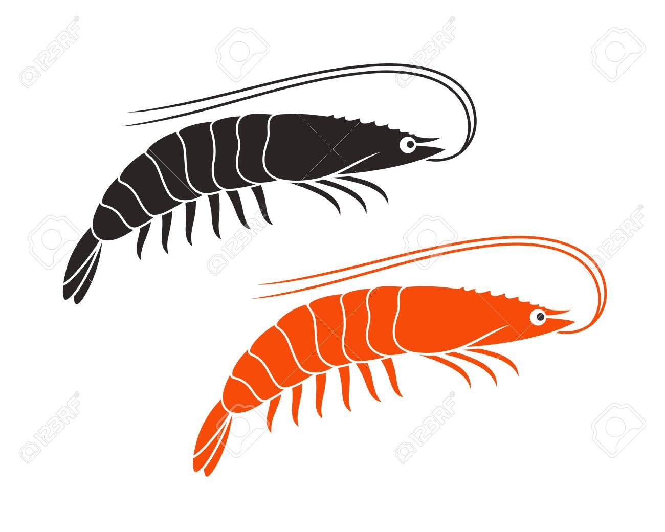 Shrimp logo. Isolated shrimp on white background. Prawns - 134470665