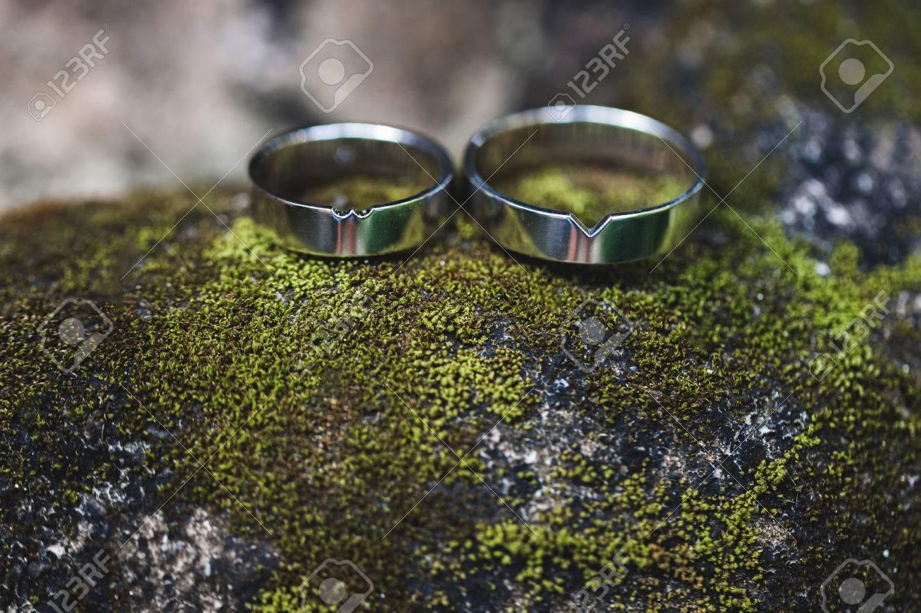 Zwei Silberne Hochzeit Ringe Nahaufnahme Makro Foto Auf Moosgruner