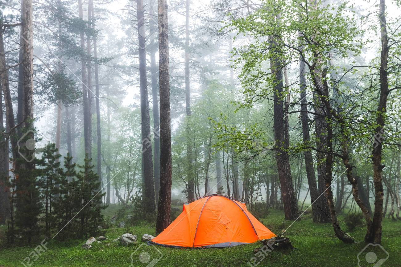 Orange lightweight tent in foggy forest. Cold and wet misty weather in hike overnight & Orange Lightweight Tent In Foggy Forest. Cold And Wet Misty ...