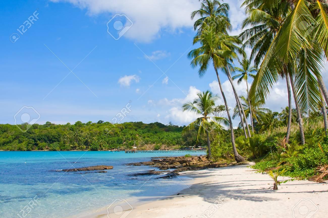 Serenity Shore Exotic Paradise Stock Photo - 17009969
