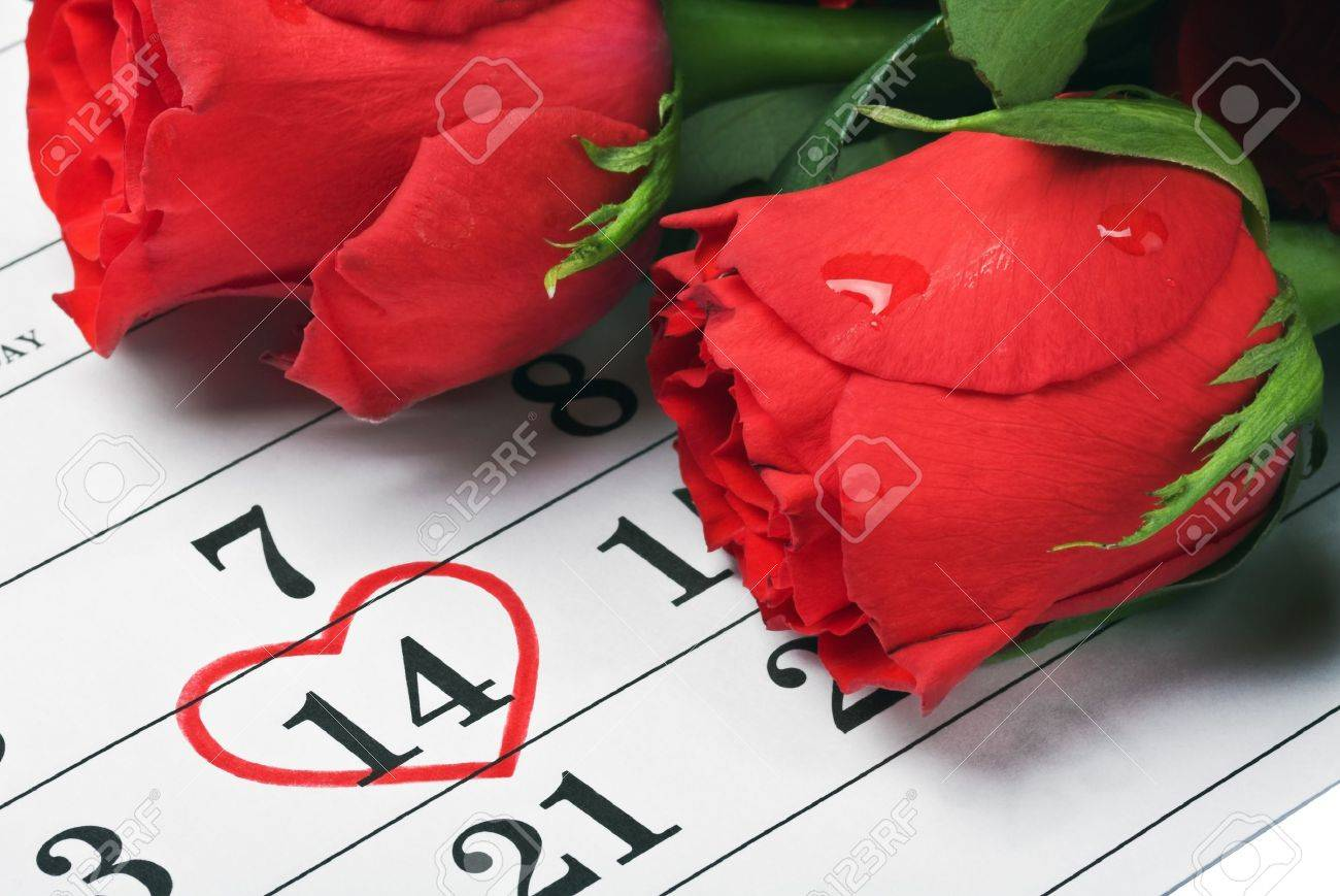Red Roses Lay On The Calendar With The Date Of February 14 ...