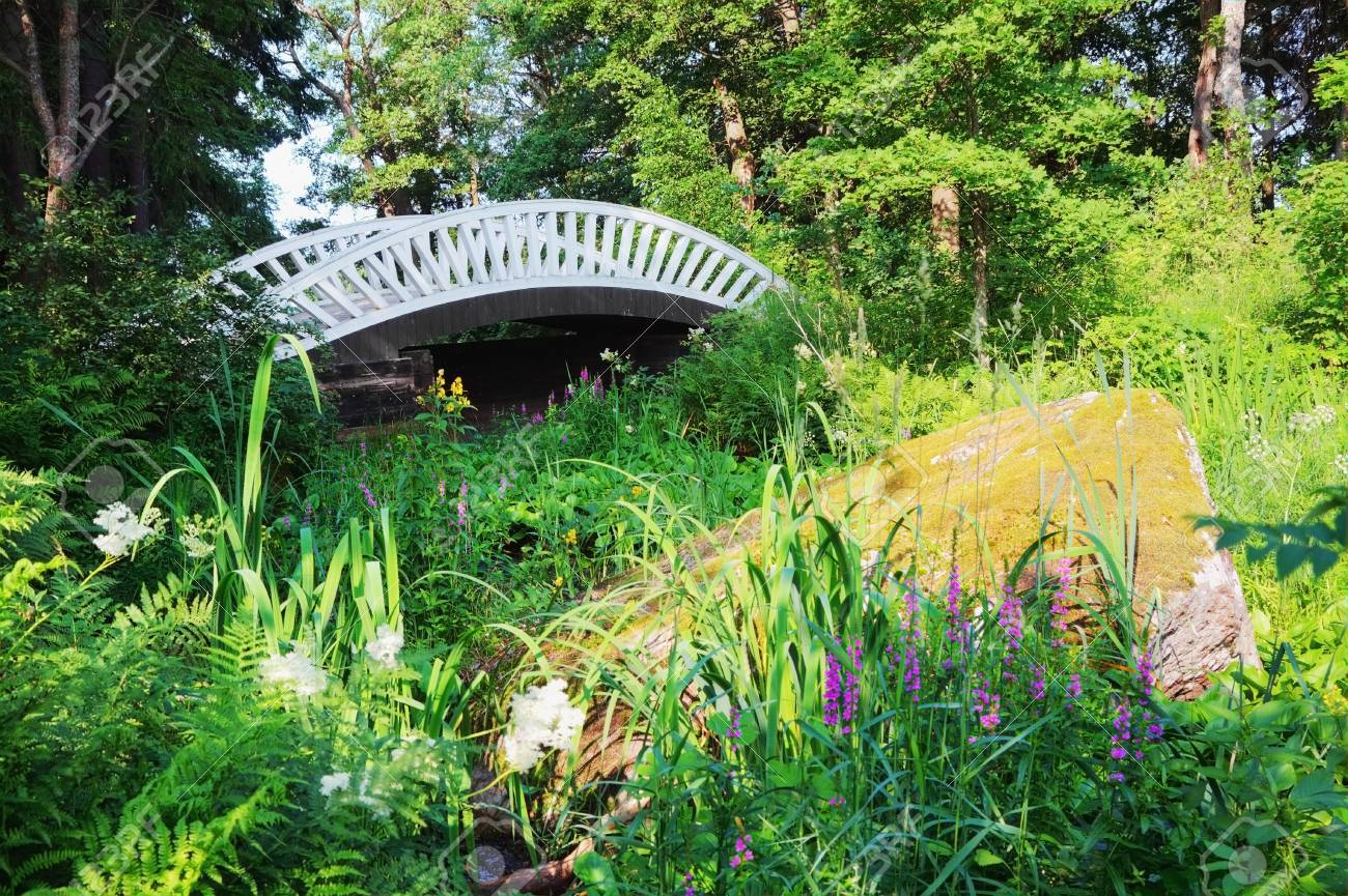Old Chinese Bridge In The Park Of Mon Repos, Vyborg, Russia. The Bridges