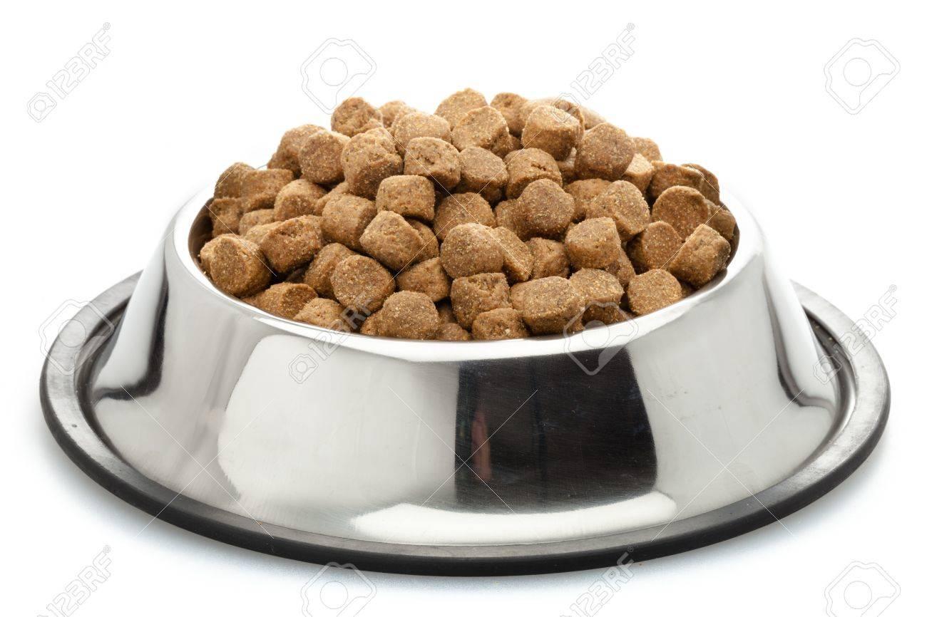 Dog Food. - 48196267