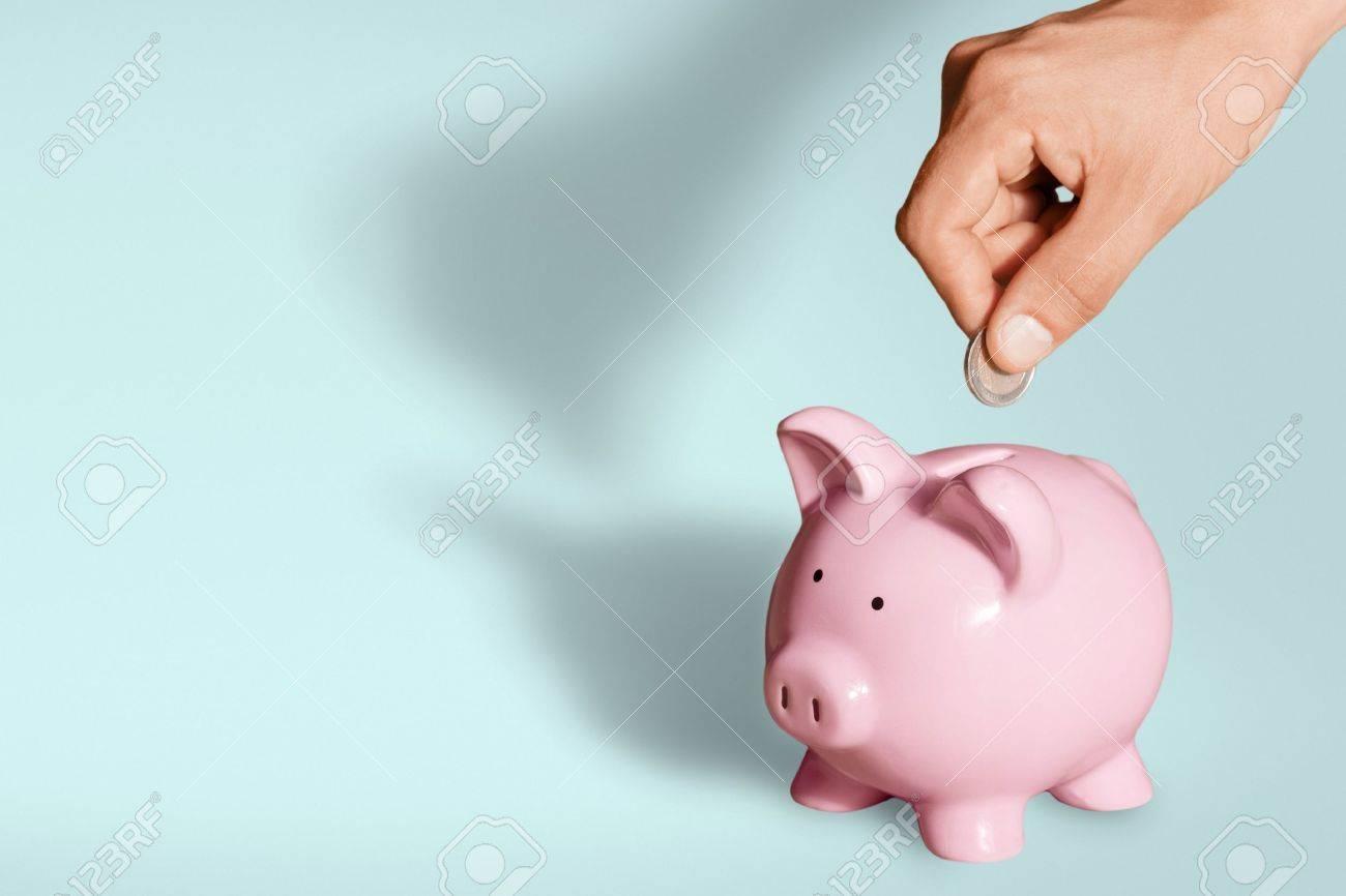 Piggy Bank. Stock Photo - 48444293