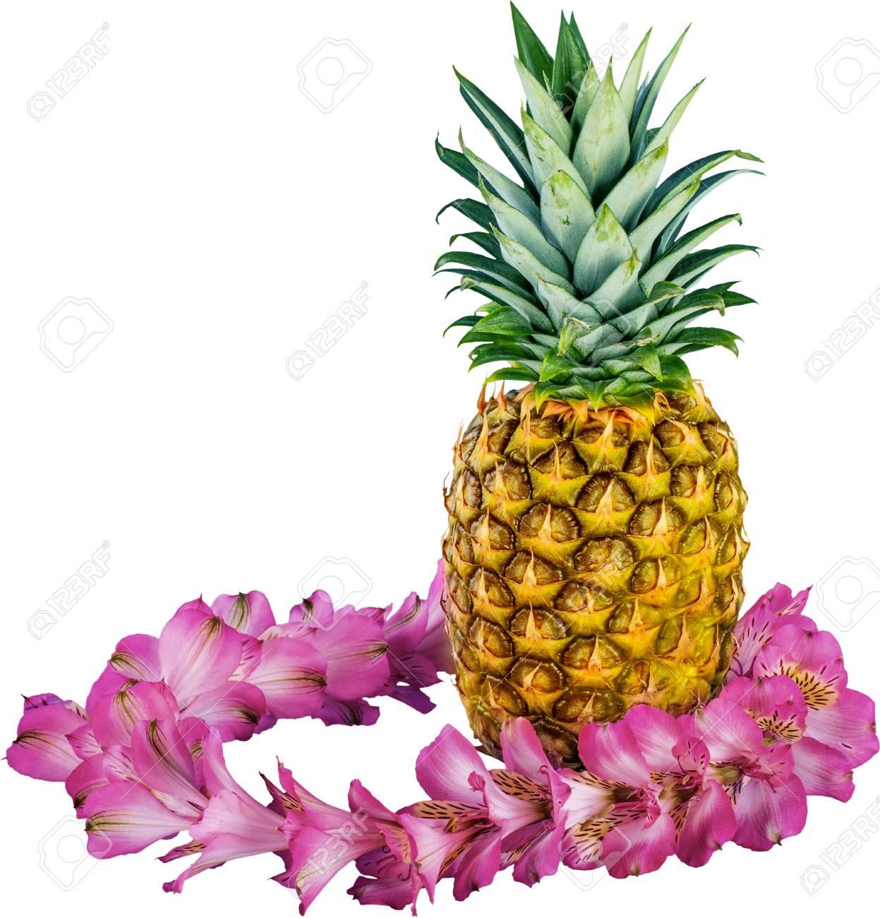 Hawaiian pineapple and fresh purple flower lei stock photo picture hawaiian pineapple and fresh purple flower lei stock photo 93376284 izmirmasajfo
