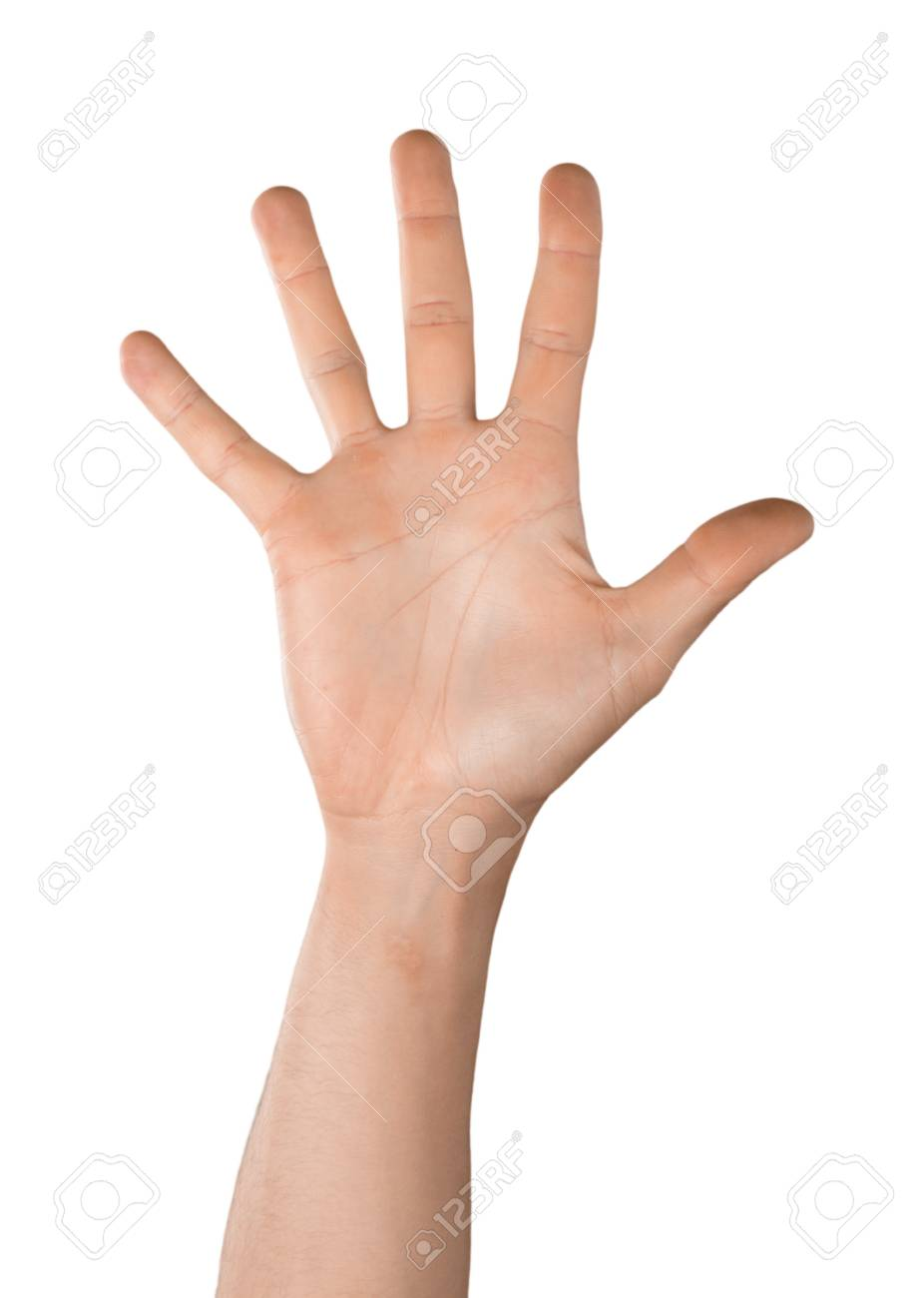 Raised Hand / Five Fingers Stock Photo, Picture And Royalty Free Image.  Image 104626809.