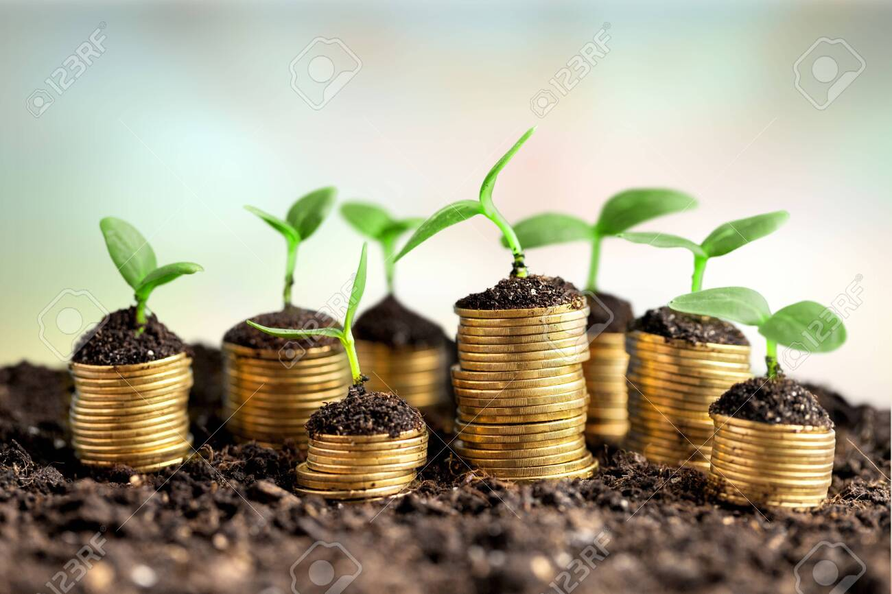 Coins in soil with young plants on background - 133630532