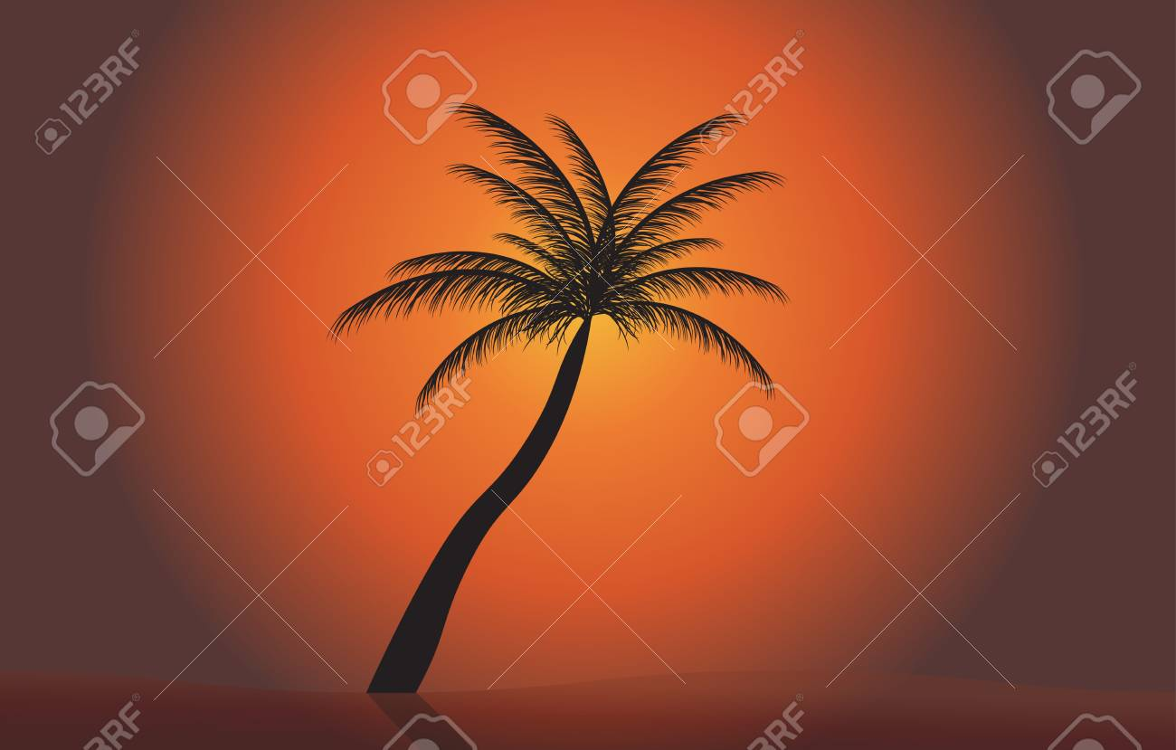 Palm in the sunset  Vector illustration  EPS 10 Stock Vector - 16731955