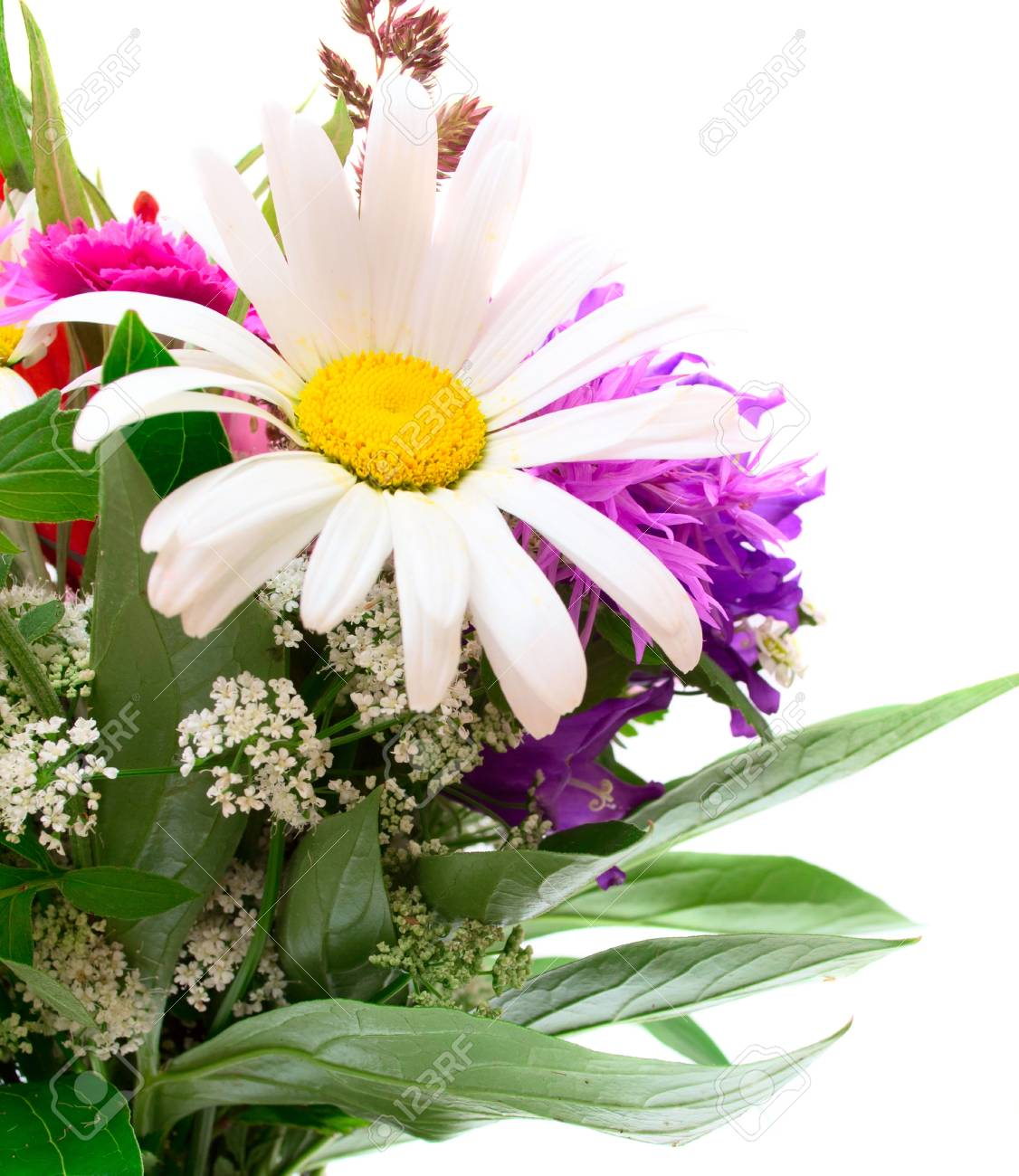 Colorful flowers bouquet Stock Photo - 17707761