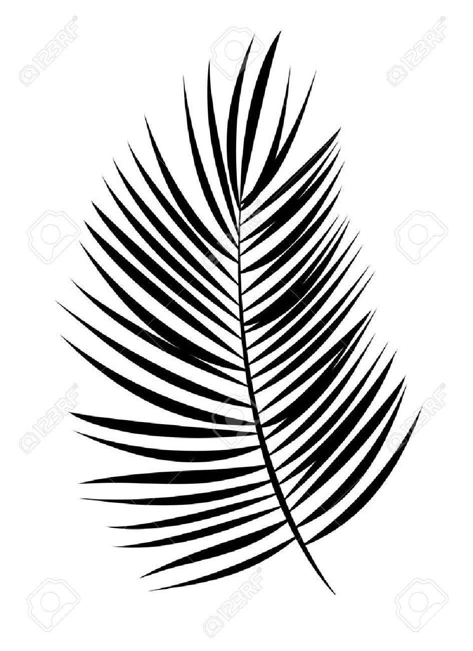 palm leaf vector background isolated illustration eps10 royalty free rh 123rf com palm leaf vector download palm leaf vector download