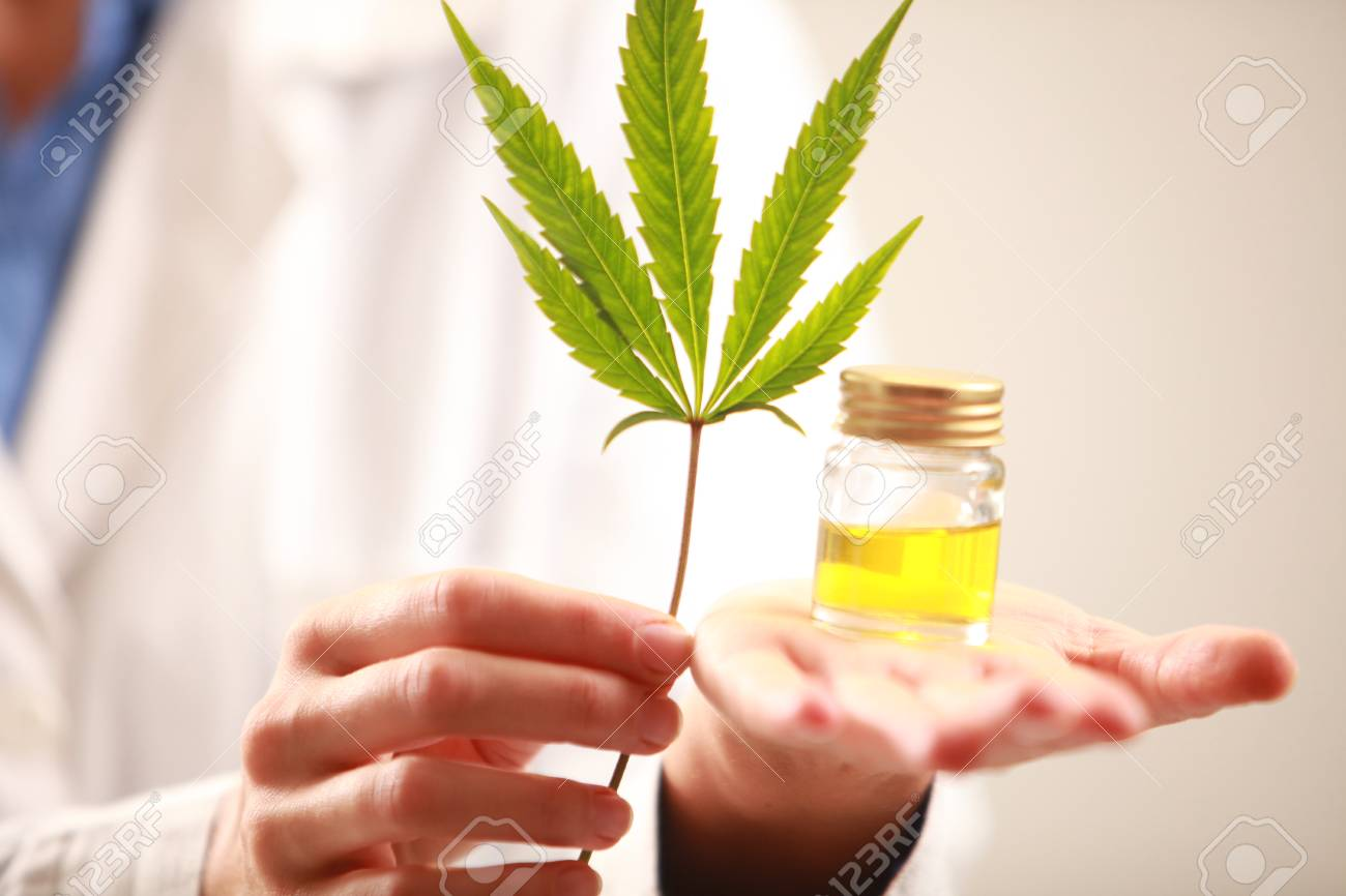 Woman doctor holding a cannabis leaf and oil alternative medicine