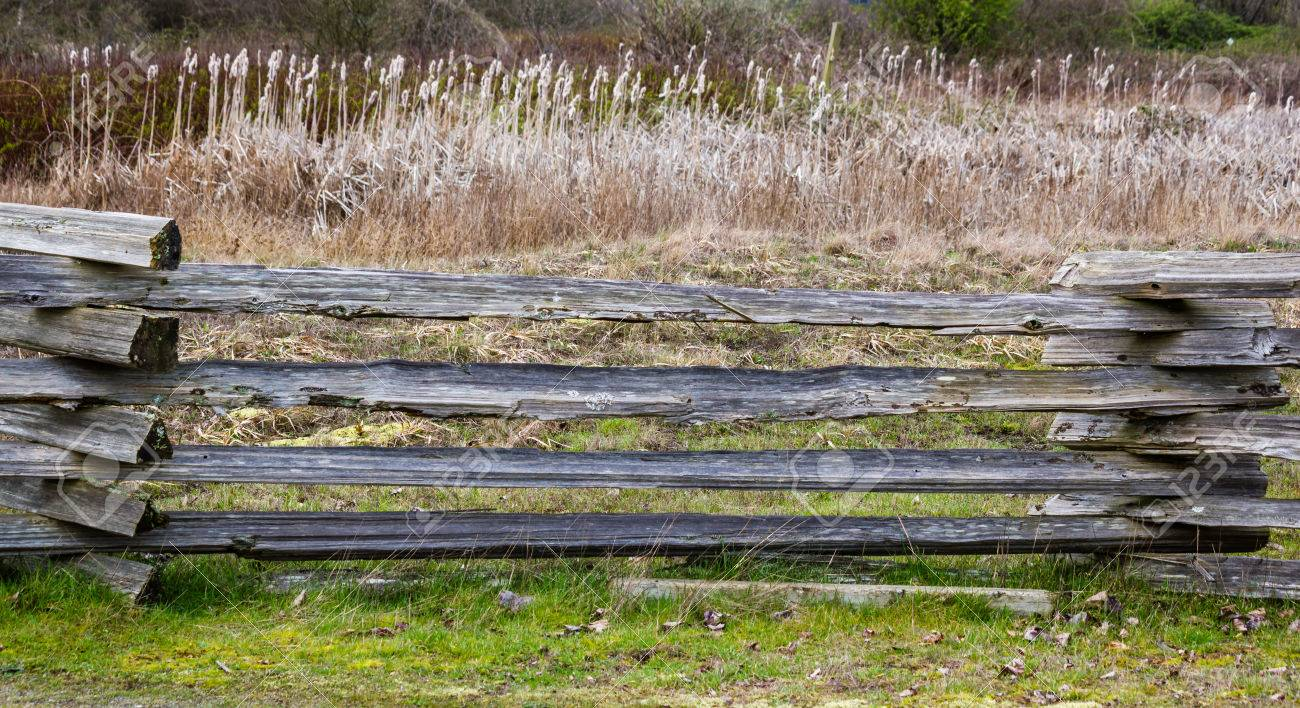 Old Wood Fence In Country Side   Texture Or Background Stock Photo    54993068