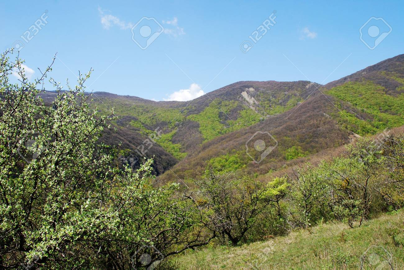 Beautiful landscape in green Crimean mountains with hills Stock Photo - 988682