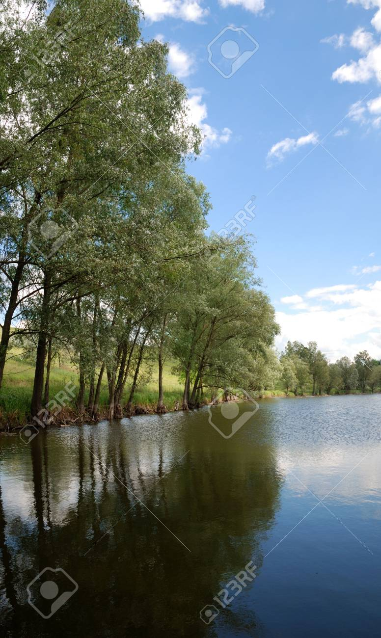 Beautiful landscape. Green hills and lake with trees on bank. Stock Photo - 1326448