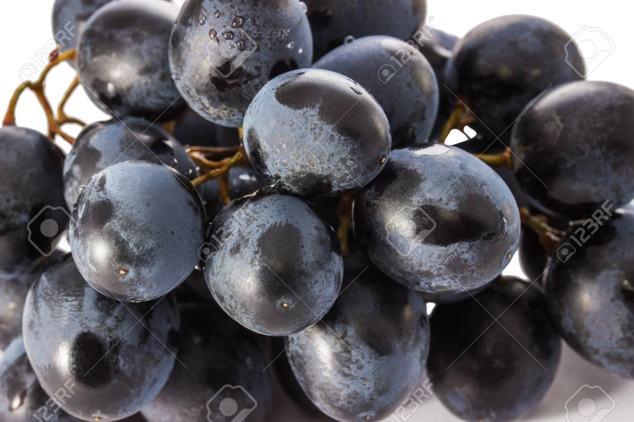 Blue Grapes Close Up Of Bright And Clean Fruits Useful For Health Stock Photo Picture And Royalty Free Image Image 91009966
