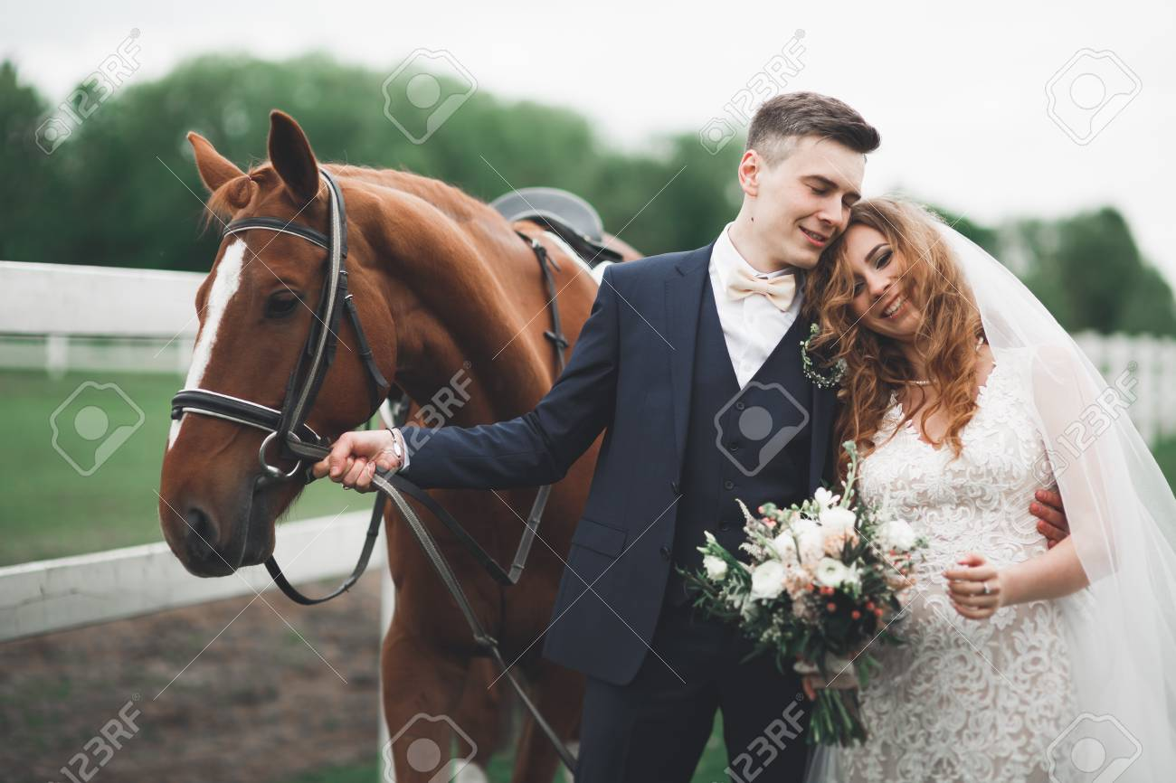 Bride And Groom In Forest With Horses Wedding Couple Beautiful Stock Photo Picture And Royalty Free Image Image 109627371