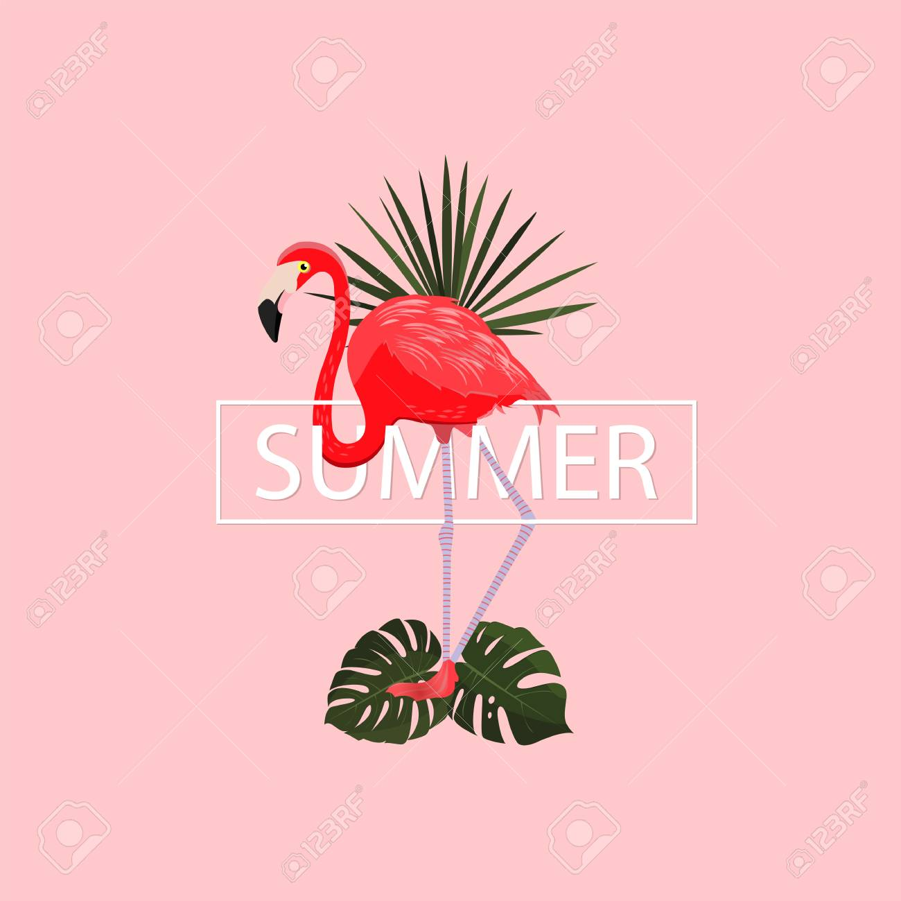 Summer Tropical Poster. Vector Illustration.Summer Pink Background ...